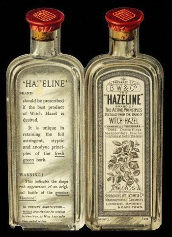 Hazeline-copie-1.jpg