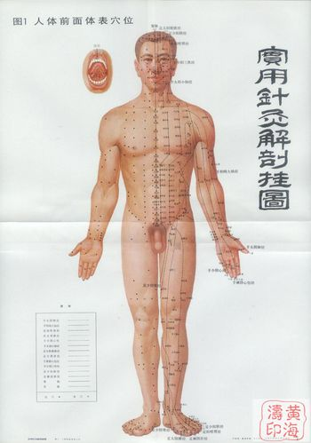 acupuncture-face.jpg