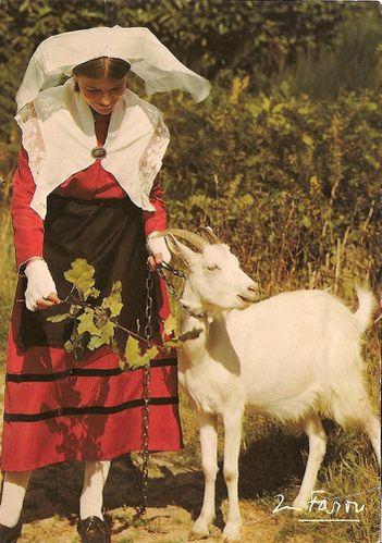 Cartes postales Limousines du groupe folklorique d'Isle