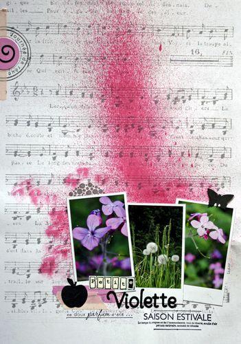 violette-web.jpg