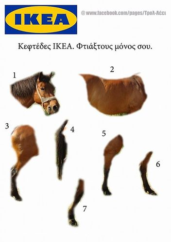 kit-cheval-ikea.jpg