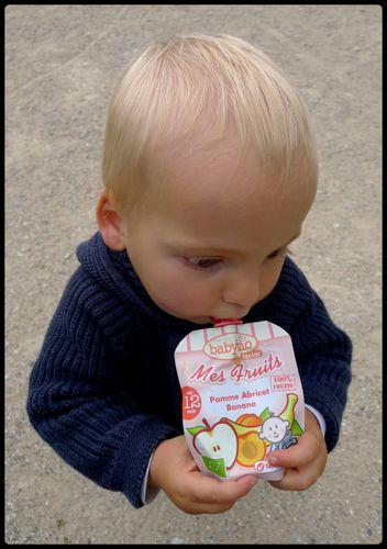 compote gourde bebe babybio