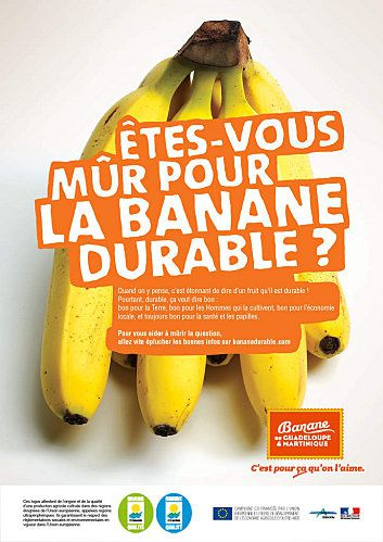 banane-durable-martinique-guadeloupe