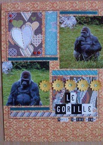 gorille-vous.jpg