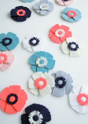 anemone magnets-600-3-3