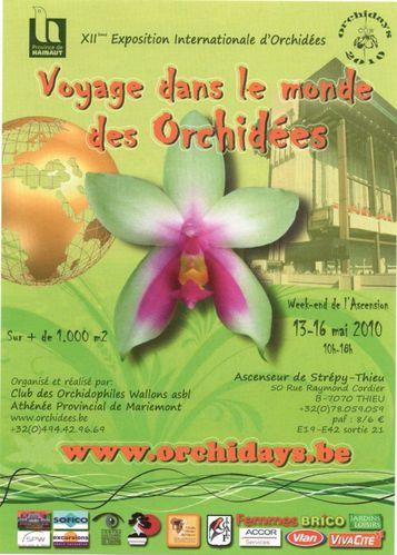 orchids1 900