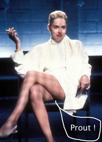 basic-instinct-intestin-prout-sharon-stone.jpg