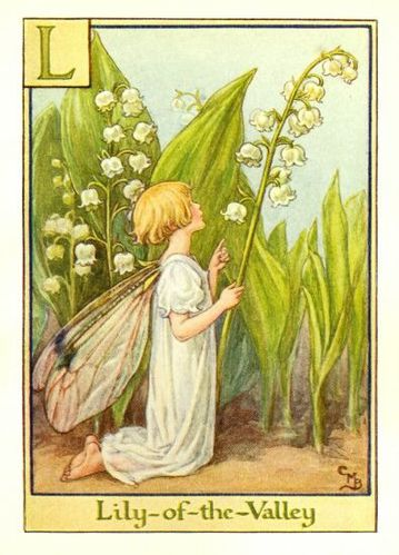 http://img.over-blog.com/359x500/1/11/80/51/printemps12/lily_of_the_valley_flower_fairy.jpg