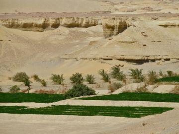 227 EL KSAR Oasis