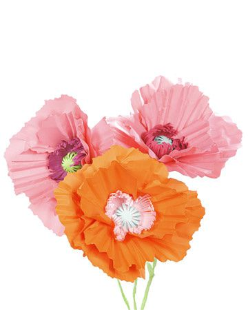 4160_052009_paperpoppies_xl.jpg