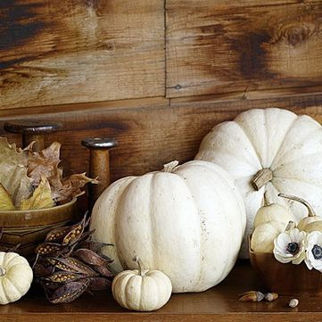 White-Pumpkin-Wedding-Decor.jpg