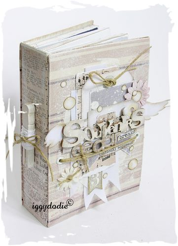 album scrapbooking bain encre distress rose