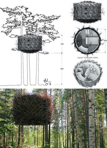 tree-house-design-plans.jpg