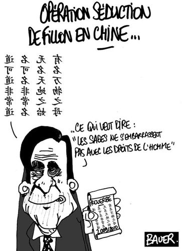 voeux-chinois1.jpg