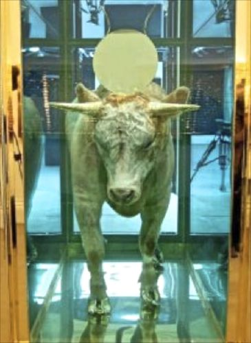 Hirst-golden-calf.jpg