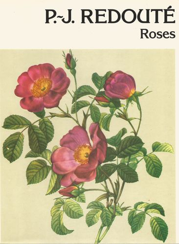 REDOUTE ROSES 1