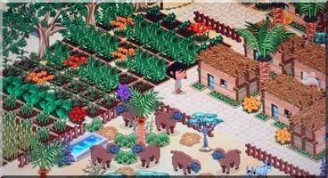 IV -250 Le jardin DSC02473