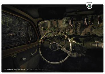Skoda-Auto_Bats_1.jpg