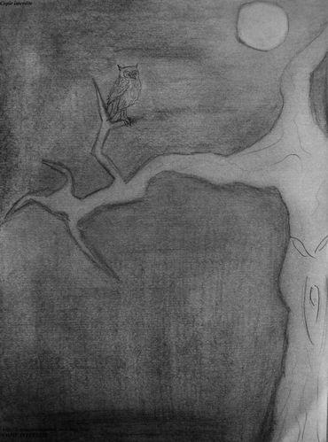 Arbre-effrayant-copie-1.JPG