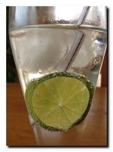vodka-tonic-perso-copie-2.jpg