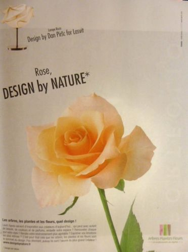 Design par Nature, La rose et la lampe