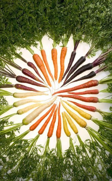 Carrots_of_many_colors-copie-1.jpg