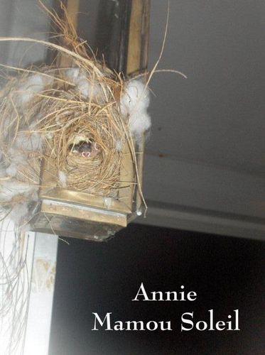 Oiseaux-Annie-nid.jpg
