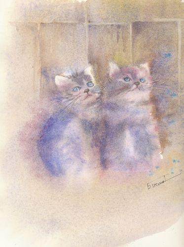 chatons2.jpg