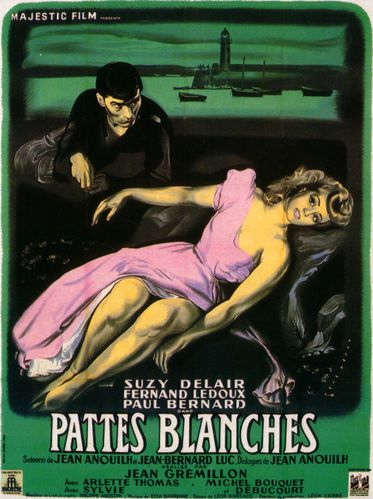 pattes-blanches.jpg
