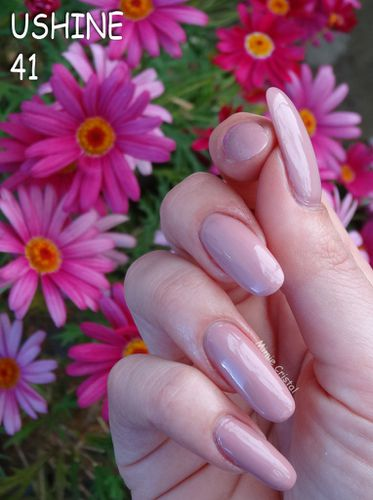 USHINE-41-rose-03.jpg