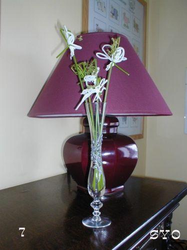 fleur-de-jonc-Mamigoz-7.jpg