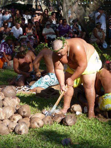2010-07-14 Jeux traditionnels - Récolte copra (15)