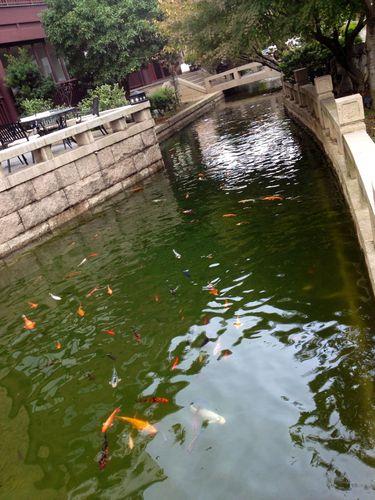 Suzhou 1064