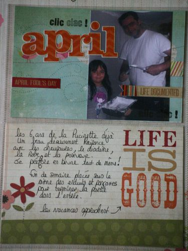 Project-life2012 4447