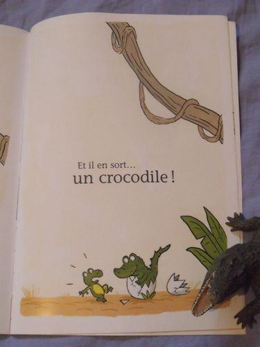 crocodiles-1--1-.JPG