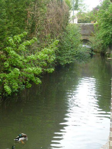 Verneuil sur Avre, l'Iton près du moulin, hors les murs 153