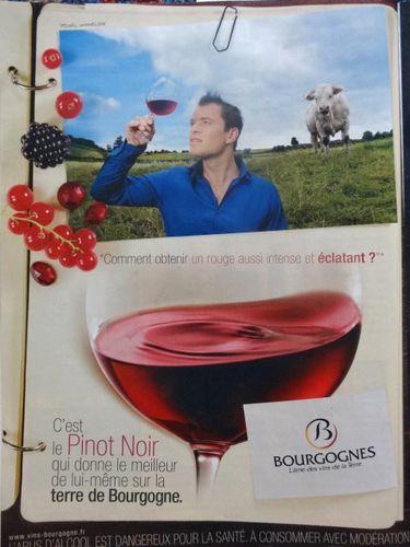 Bourgognes-Michel-2007