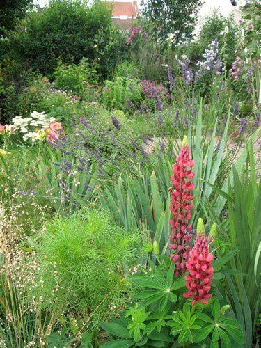 jardin-brigitte4.jpg