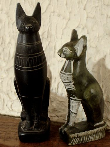 6372-Chats-Egyptiens.jpg