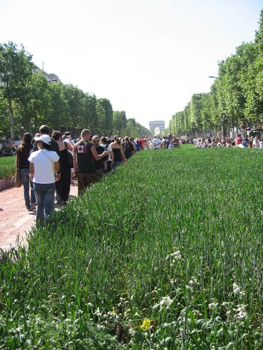Champs-Elysees-verts 5415