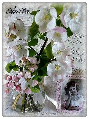 fleur-de-pommier-1.jpg