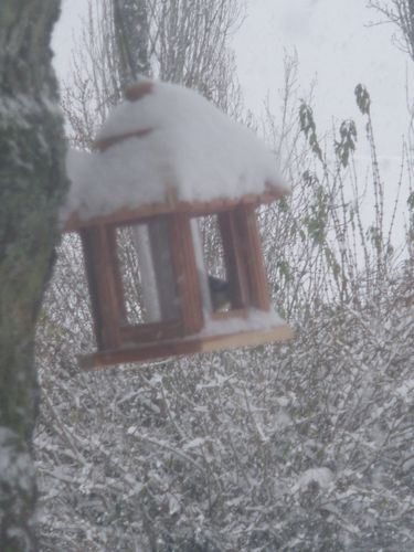 La neige (3)