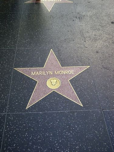 46-Hollywood - Monroe