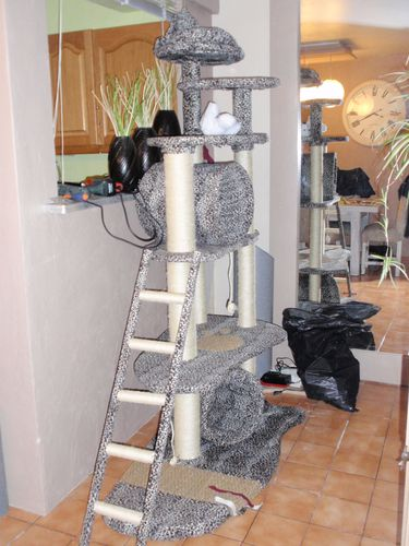 fabrication arbre a chat le blog de alexandre. Black Bedroom Furniture Sets. Home Design Ideas