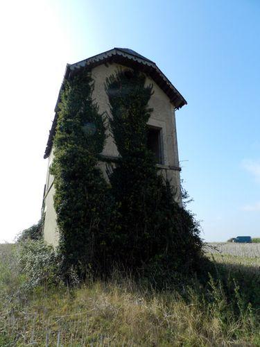Cabane-des-Moussieres--Sury-en-Vaux---8-.JPG