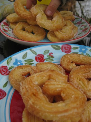 blog palmiers vanille 1