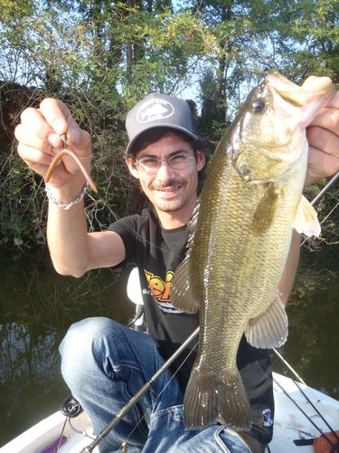 13eme rencontres black bass france le blog de french for 13 fishing fate black