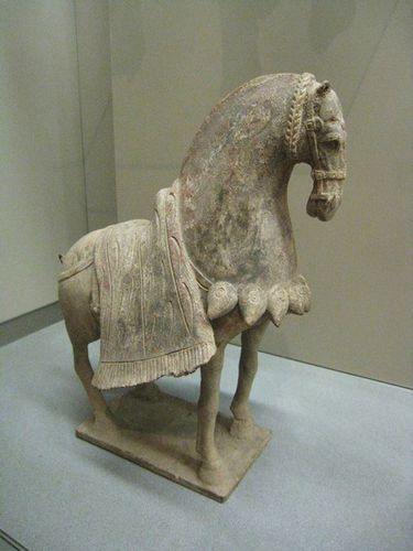 chevaux tang