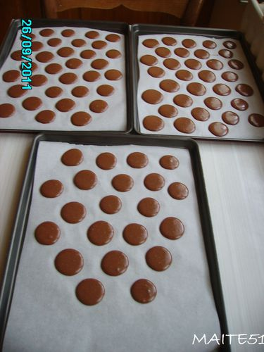 3-plaques-coques-Cacao-26-08-2011.JPG