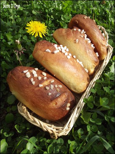 Petit-pain-au-lait.JPG